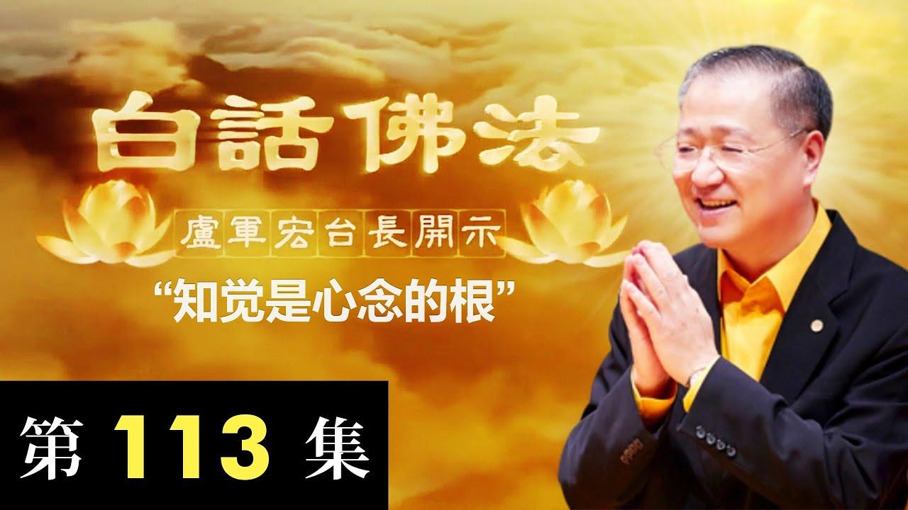 卢台长【知觉是心念的根】2020年8月1日卢军宏台长白话佛法开示(第113集)