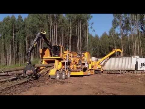 Eucalyptus Chipper – CBI 754 Disc Chipper & CBI Flail 604