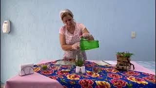 Casa dos Aposentados/as: Receita de Água Saborizada com nossa diretora Deise Alves.