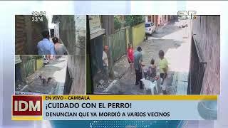 Perro atacó a una anciana en el barrio Cambala