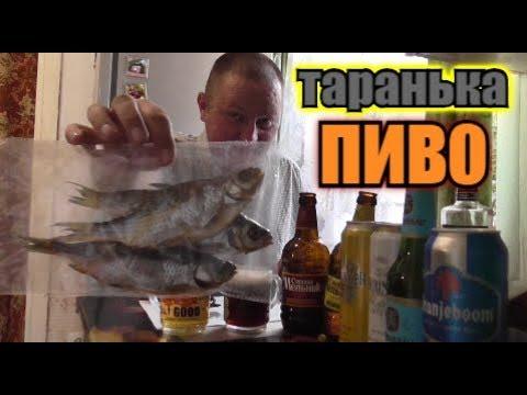 """Пью ПИВО """"СТАРый МЕЛЬНИК"""" под вЯленую РЫБУ... photo"""