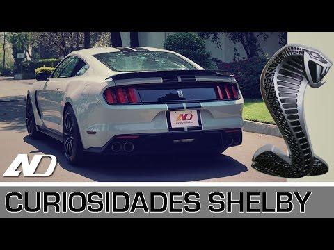 10 curiosidades que encontré en el Shelby GT350 - AutoDinámico