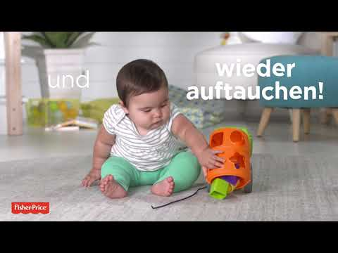 Fisher-Price: Babys bunter Lernlaster