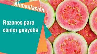 Razones para comer guayaba todos los días | Alimentación