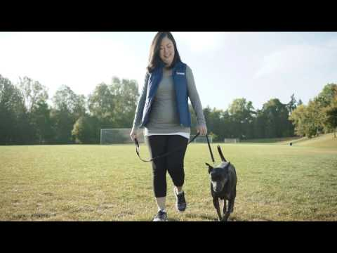 Meet Lilian Wong - Banfield Pet Hospital Careers