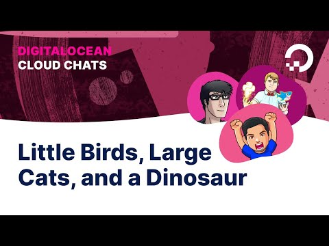Little Birds, Large Cats, and a Dinosaur | Cloud Chats: Episode 7