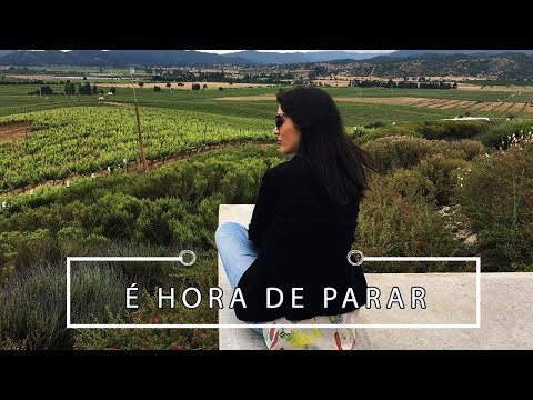 Vou tirar férias do Youtube | Pigmento F