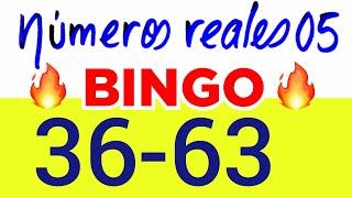 NÚMEROS PARA HOY 07/07/20 DE JULIO PARA TODAS LAS LOTERÍAS..!! Números reales 05 para hoy..!!