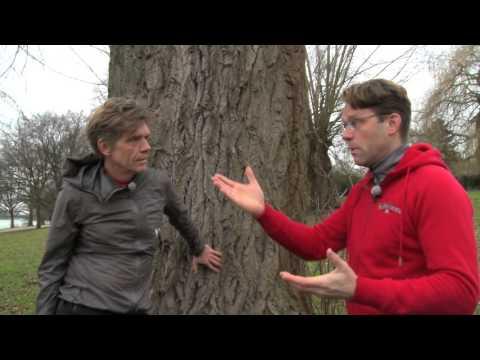 Achim Achilles meets P. Jentschura – Teil 1/3