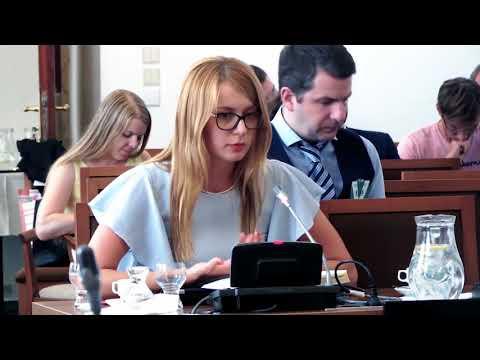 Eva Jordán Vaňková (Ministerstvo průmyslu a obchodu) -– Článek 13 versus volné poskytování služeb