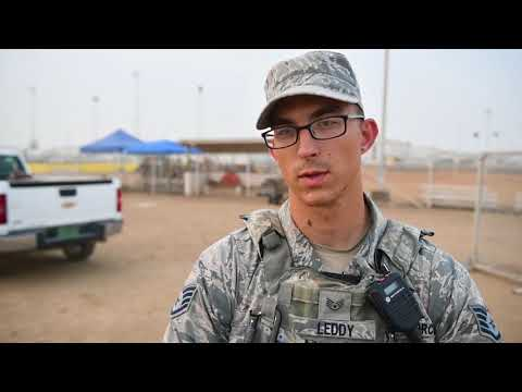 DFN: Package: BG France Participates in K9 Demonstration on ADAB, UNITED ARAB EMIRATES, 02.28.2018