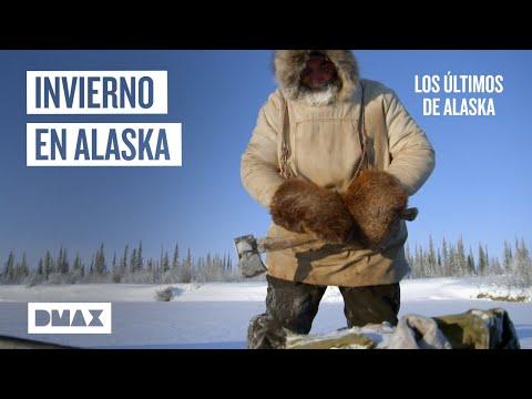 Trucos para la supervivencia durante el frío invierno de Alaska   Los últimos de Alaska
