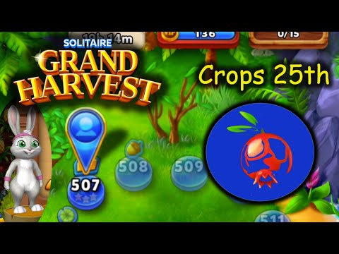 SGH E507 ~ 511   25th Crop Section 4 (Solitaire Grand Harvest)