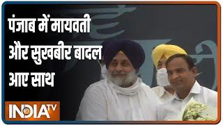 Punjab में हो गया अकाली दल और BSP के बीच गठबंधन, सीटों का बंटवारा भी फाइनल - INDIATV