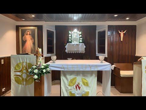 IV Domingo de Pascua Jesucristo  El Buen Pastor - Padre Teófilo Rodríguez