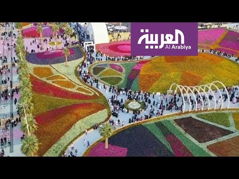 صباح العربية: زيارة أهم مواقع يبنع غرب السعودية