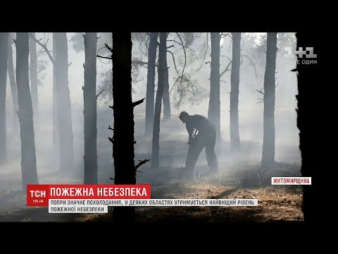 Пожежна небезпека: рятувальники продовжують боротися з полум'ям на Житомирщині
