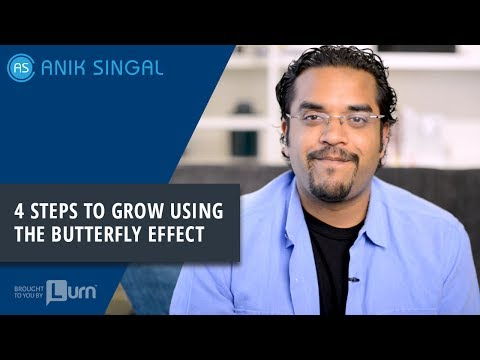 4 Steps To Grow Using The Butterfly Effect