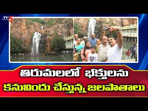 ప్రకృతి అందాలతో పరవశిస్తున్న తిరుమల గిరులు | Tirumala | TV5 News
