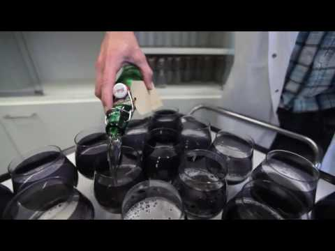 Grolsch Corporate Video English
