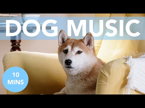 Relax My Dog - #4 Soothing Anxiety Music (DELUXE ALBUM)
