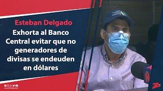 Delgado exhorta al Banco Central evitar que no generadores de divisas se endeuden en dólares