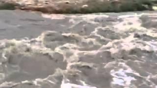 فيديو:طائرات وغواصون وكلاب بوليسية يبحثون عن 4 مفقودين في أمطار الرياض