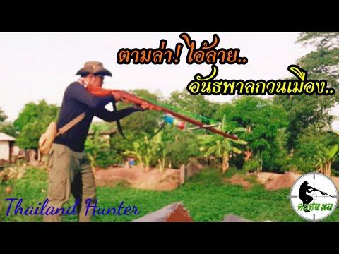 #SHOOT-FISH-ยิงปลา-ล่าไอ้ลายตา