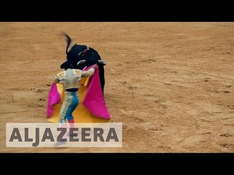 Colombians rally against bullfighting