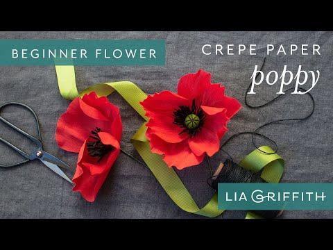 How to Make a Poppy Bloom - Enchanted Garden Starter Flower