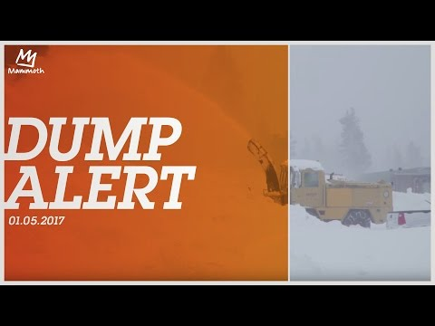 Dump Alert    01.05.2017