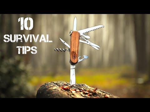 10 Wilderness Survival Tips | Bushcraft Skills