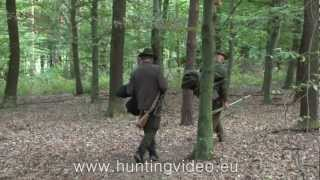 Red Stag Hunting In Hungary Kust�nszeg (HD)