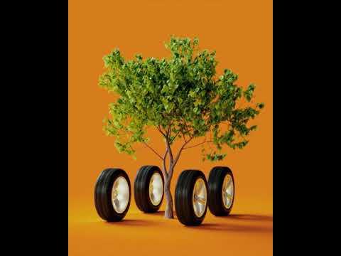 Du planter et træ, når du får lavet serviceeftersyn hos AutoMester E+