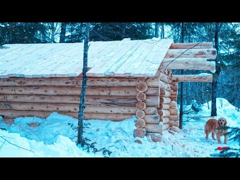 How to Build a Log Cabin | Purlins and Roof| Lake Trout Stew | Cast Iron Cooking