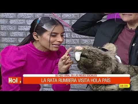 Humor   La rata rumbera visita Hola País