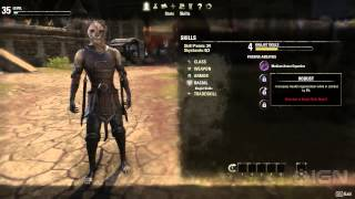 The Elder Scrolls Online - Character Progression Walkthrough