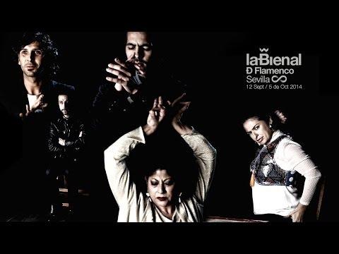 Video Bienal