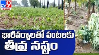 పొంగిపొర్లుతున్న వాగులు, వంకలు : Andhra Pradesh - TV9 - TV9