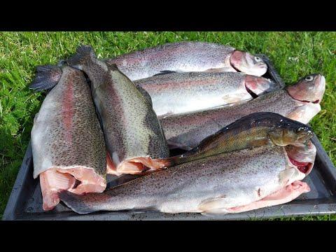 #ตกปลา❗🐟--วันนี้พาทุกคนไปตกปลา