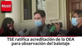 TSE RATIFICA OEA SERÁ OBSERVADOR