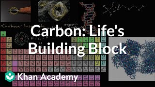 Carbon as a building block of life