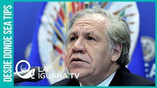 Almagro sigue reivindicando el golpe de estado en Bolivia y ahora quiere dar otro en Venezuela