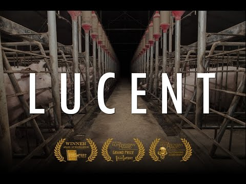 Lucent 2014 documentary movie play to watch stream online