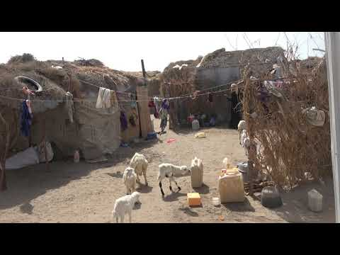 الحديدة؛ قذيفة هاون حوثية تعيق نازح يُعيل 10 أطفال
