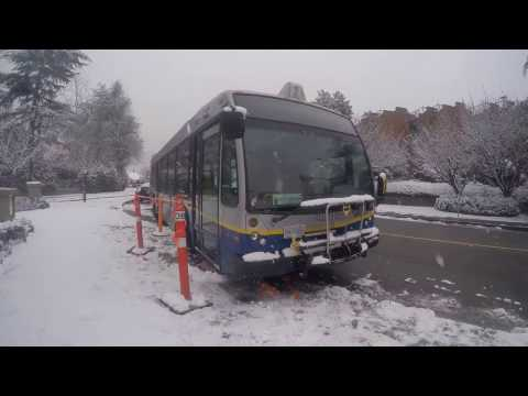Transit FAIL 2 - Snow in Vancouver 2017