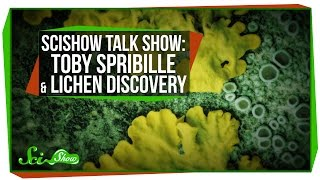 SciShow Talk Show with Toby Spribille & A New Lichen Discovery