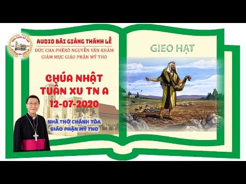 Bài giảng CN XV TN A - Đức Cha Phêrô Nguyễn Khảm