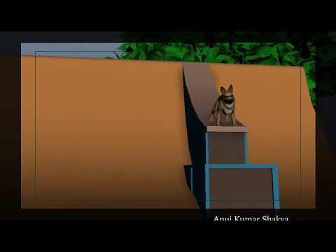 Dog Locomotion   4 Legged 3d Animation   Quadruple   Behaviour   Animal