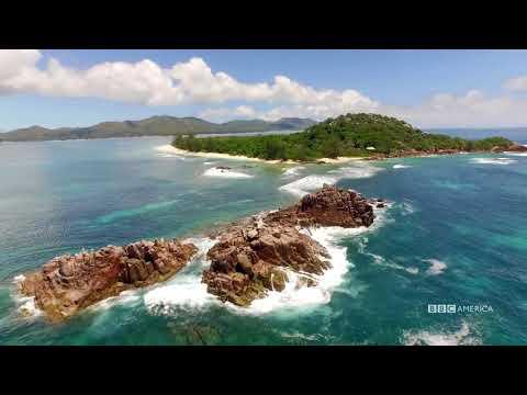 Visual Soundscapes - Islands | Planet Earth II | BBC America